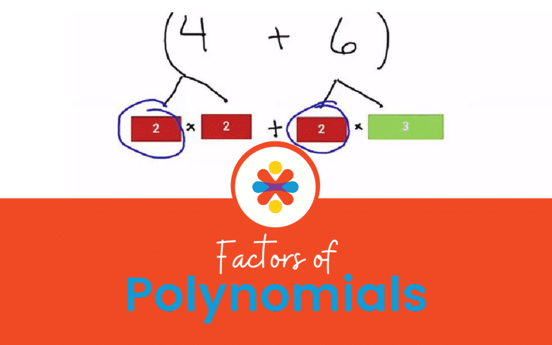 Factors of Polynomials